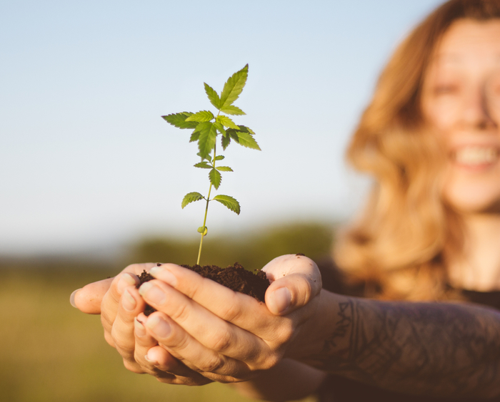 Woman holding hemp plant in her hand